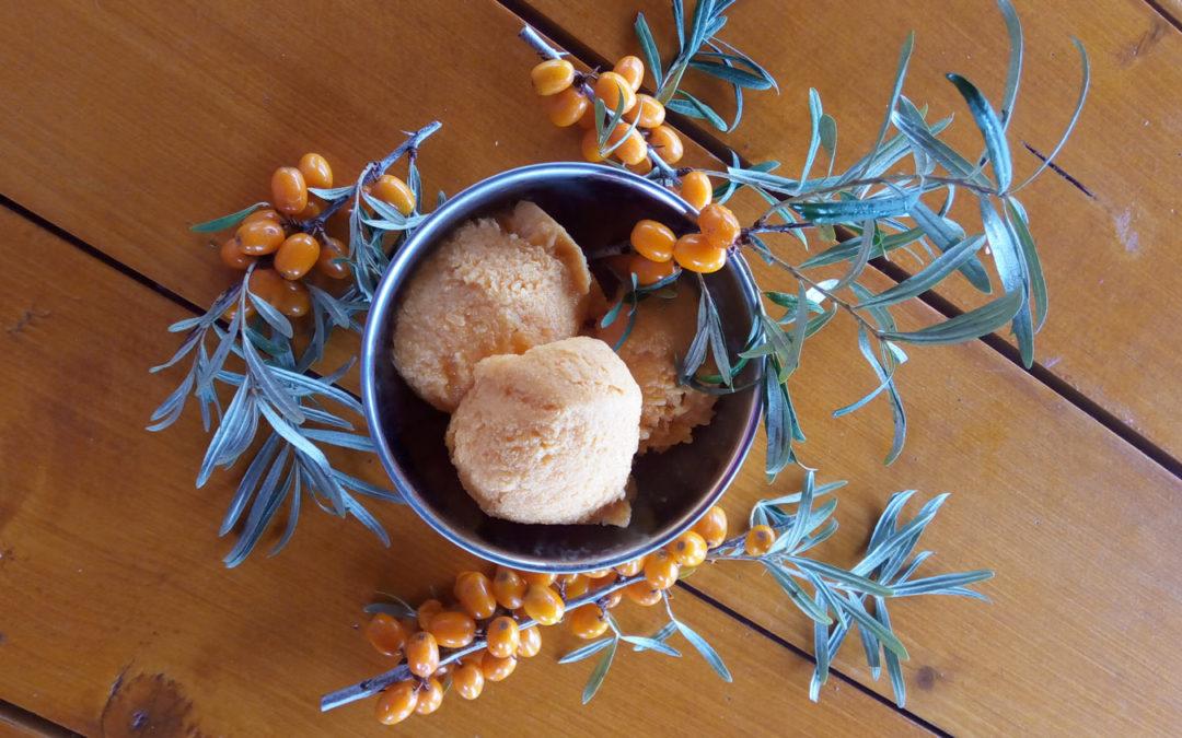 Înghețată de cătină – pe placul copiilor