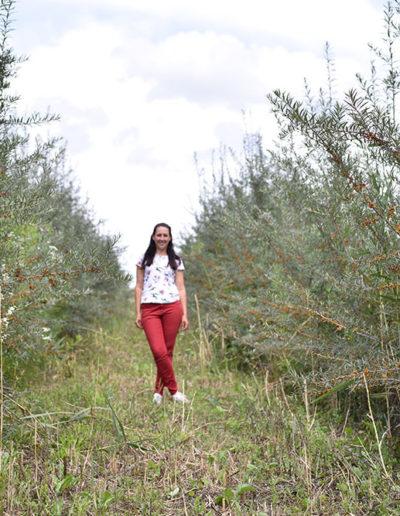 plantatie-catina-ecologica-badeanca-kinga